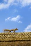 Strohfuchs auf dem Dach Lizenzfreie Stockbilder