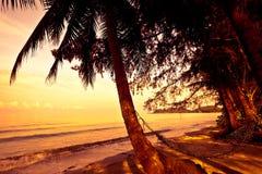 Strohhängematte auf Sonnenuntergang Lizenzfreie Stockfotos