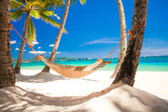 Strohhängematte im Schatten der Palme auf tropischem Lizenzfreies Stockfoto