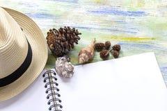 Strohhut, Muscheln und Notizbuch auf buntem hölzernem mit Reise Stockbilder