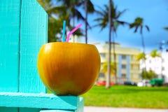 Strohkokosnuß Florida Miami-Südstrandes 2 stockbilder