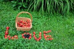Strohkorb mit Erdbeeren u. Erdbeere-` LIEBE ` Wort Lizenzfreies Stockbild