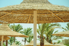 Strohregenschirm auf dem Strand Stockfoto