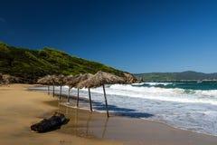 Strohregenschirme auf einem Strand Stockbilder