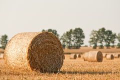 Strohrollen und -weizen auf Landwirtfeld Stockfotos