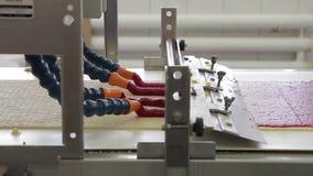 Stroken met deeg die langs transportband in bakkerij zich binnen bewegen stock video