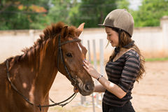Stroking pony Stock Photo