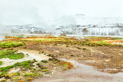 Strokkur geyser in Iceland Stock Image