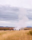 Strokkur Geysir eruption in autumn, Iceland Royalty Free Stock Image
