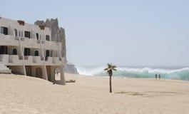 Stroll auf dem Strand Stockbilder