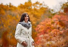 Stroll in autumn park. Attractive young woman in warm coat and scarf walking in autumn park stock photos