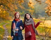 Stroll in autumn park. Cheerful girls talking while walking in autumn park stock photos