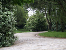 Stroll dans le jardin Photo libre de droits