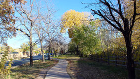 A Stroll in the Evening Shadows. A walkway through the evening shadows and the trees with leaves changing colors Royalty Free Stock Image
