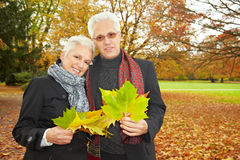 Stroll in the park. Senior citizens couple stroll in a park in autumn royalty free stock photos