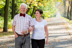 Stroll in park. Aged cheerful marriage and autumn stroll in park stock image