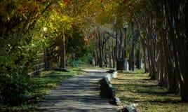 Stroll in Park Stock Image