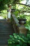 Stroll through the summer garden Stock Photo