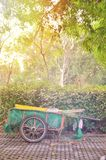 Strollers in the park. Thailand Royalty Free Stock Photos