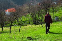 Strolling in Baia Mare, Romania. A man strolls through the countryside in Baia Mare, Romania Stock Image