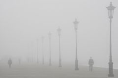 Strolling in the Fog Stock Photography
