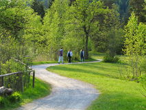 Walking through the nature at spring. A promenade with a family enjoying the green nature on a sunny day at spring. Activity holiday in the Bavarian Alps stock image
