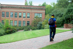 Strolling student Stock Photography