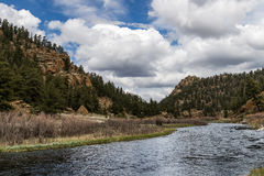 Strom, der durch die elf Meilen-Schlucht Colorado läuft Stockbilder