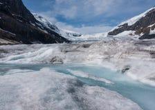 Strom der Glazial- Schmelze auf Athabasca-Gletscher stockfotos