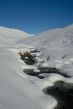 Strom in der schneebedeckten Landschaft Stockfoto