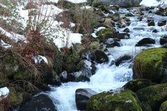 Strom des fließenden Wassers in der Stadt von Triberg lizenzfreies stockbild