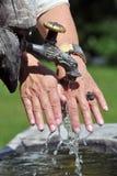 Strom des Wassers laufend über Hände, Nahaufnahme Lizenzfreie Stockbilder