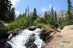 Strom entlang der Spur Rocky Mountain National Park 1 stockfotografie