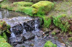 Strom mit Wasserfall Lizenzfreie Stockfotos