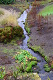 Strom mit Wasserfall Lizenzfreies Stockbild