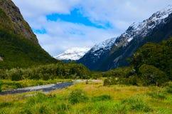 Strom in Nationalpark Fiordland stockbild