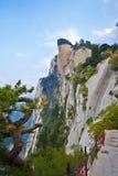 Stroma faleza Zdjęcie Royalty Free