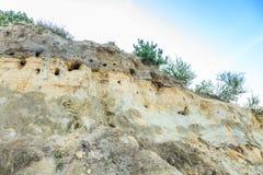 Stroma piasek ściana z gniazdeczkami bank dymówki, Riparia riparia Fotografia Stock