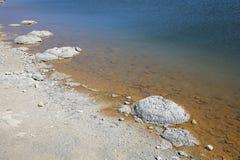 Stromatolite Arkivfoton