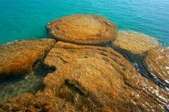 Stromatolites在墨西哥的Bacalar盐水湖 免版税图库摄影