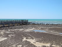 Stromatolites,鲨鱼湾,西澳州 免版税库存照片