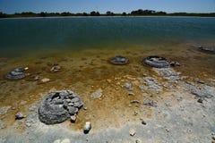 stromatolites 湖Thetis 西万提斯 Dandaragan郡  澳大利亚西部 澳洲 库存照片