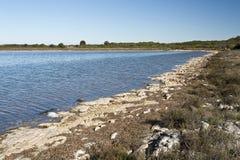 stromatolites Στοκ Εικόνες