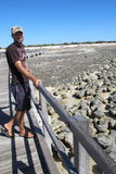 Stromatolites, bahía del tiburón, Australia occidental Fotografía de archivo