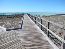 Stromatolites, Haifisch-Bucht, West-Australien stockfoto