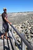 Stromatolites hajfjärd, västra Australien Arkivbild