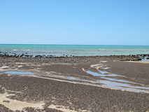 Stromatolites, rekin zatoka, zachodnia australia Obrazy Royalty Free