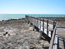 Stromatolites, Shark Bay, Western Australia Royalty Free Stock Photo