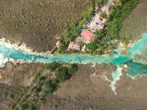 Stromatolites w Bacalar rzece, Meksyk obraz royalty free
