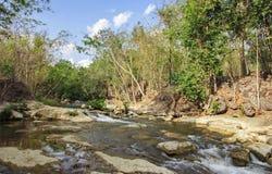 Stromen in bos stock fotografie